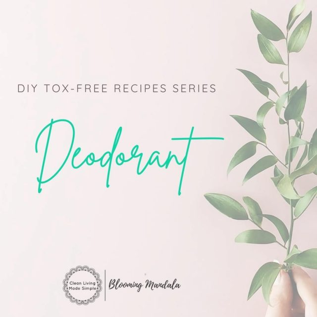 DIY TOX-FREE RECIPE SERIES - BODY DAY 1 - DEODORANT💪 Deodorant is a GREAT place to start your DIY Lowtox journey. Many of us are still using antiperspirant deodorants, believing these are our only options to stop the stink. These antiperspirants work by using chemicals to stop our body sweating. However stopping the sweating process is blocking our bodys natural process of cleansing and expelling toxins from our bodies! ⛔ EEEK we dont want to be stopping that! Making your own deodorant can be a great way to not only avoid antiperspirants but also other nasty ingredients found in mainstream deo's.  Ok so DIY-ing your own deodorant might seem like an all too daunting and complicated task... But we are here to squash that myth! Check out these 4 super simple FREE recipes that cater for all DIY levels. If you dont like a paste there is a roll on AND a spray option!  Too easy!  Give one or 2 of them a try, promise you wont go back to your store brought dodgy brothers 😜 👀https://bloomingmandala.com.au/2020/01/31/diy-sensitive-skin-deodorant-without-baking-soda/ 👀https://bloomingmandala.com.au/2020/01/19/how-to-make-diy-roll-on-deodorant/ 👀https://bloomingmandala.com.au/2018/09/02/natural-diy-deodorant-paste-that-works/ 👀https://bloomingmandala.com.au/2019/05/17/2-ingredient-natural-spray-deodorant/ If you have any questions or are keen to find out more about DIY, join us and OVER 800 other wonderful DIYers in our CLEAN LIVING COMMUNITY over in Facebook (LINK IN INSTA BIO TOO) -https://www.facebook.com/groups/2475416232513135 . . . . . . . #lowtoxlife #ditchandswitch #toxinfreeliving #toxinfreehome #healthyhome #Nontoxichome #cleanproducts #greenproducts #environmentallyfriendly #diymakeup #diyskinscare #homemade #Nontoxicskincare #greenbeautylover #organicbeauty #naturalbeautyproducts #sustainablebeauty #cleanbeautyrevolution #Lowtox #lowtoxliving #cleanliving #cleanlivingmadesimple #bloomingmandala #toxfree #chemicalfree #chemicalfreeliving #diyrecipes #zerowasteaustralia #diydeodorant #diydeodorantpaste