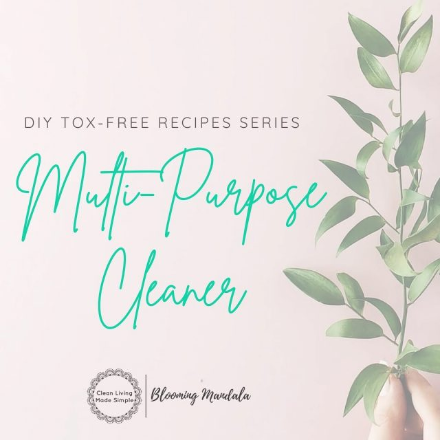 DIY TOX-FREE RECIPE SERIES - CLEANING DAY 3 - MULTI-PURPOSE SPRAY NEW RECIPE!! We couldnt do a cleaning series without including a Multi-purpose Spray. This guy is simple to make yet still so effective its a no brainer. Use it everywhere you would use a spray cleaner, kitchens, bathrooms, toilets, even outside. Have you noticed that most commercial store-bought cleaning products do not disclose their ingredients? That means you have no way of knowing what you are exposing your family to if you use them. We think that is crazy!!  Good thing that you know exactly whats going into this one, and its cheaper and easier too!! WINNER! https://bloomingmandala.com.au/2021/01/20/diy-multi-purpose-cleaning-spray/ If you have any questions or are keen to find out more about DIY, join us and OVER 800 other wonderful DIYers in our CLEAN LIVING COMMUNITY over in Facebook (LINK IN INSTA BIO TOO) -https://www.facebook.com/groups/2475416232513135 . . . . . . . #lowtoxlife #ditchandswitch #toxinfreeliving #toxinfreehome #healthyhome #Nontoxichome #cleanproducts #greenproducts #environmentallyfriendly #diycleaning #homemade #Nontoxiccleaning  #Lowtox #lowtoxliving #cleanliving #cleanlivingmadesimple #bloomingmandala #toxfree #chemicalfree #chemicalfreeliving #diyrecipes #zerowasteaustralia #diysurfacespray #diymultipurposespray #lowtoxsurfacespray