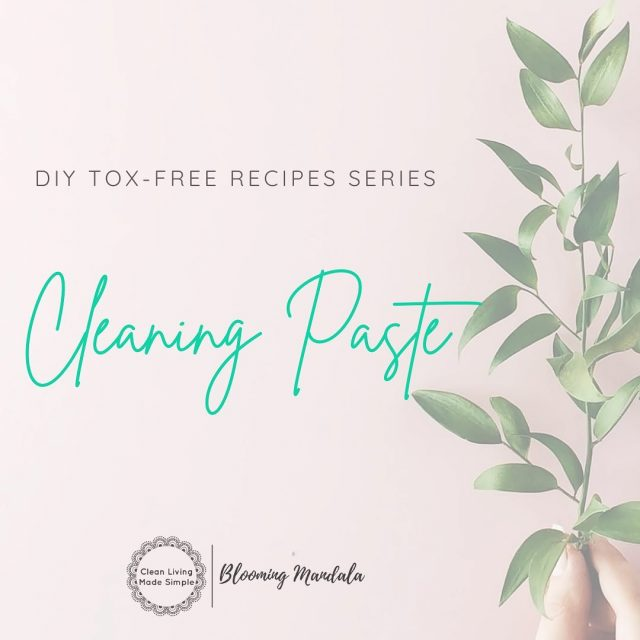 DIY TOX-FREE RECIPE SERIES - CLEANING DAY 5 - CLEANING PASTE NEW RECIPE!! Making your own natural homemade cleaning paste is a cinch, saves you money and gets one more toxin ridden product OUT of your home.  This paste is perfect for so many uses around the home including the kitchen, bathroom, laundry, walls and anywhere you have stainless steel!! We all need that little extra scrubbing power somewhere in our homes, and this my friend is your answer! https://bloomingmandala.com.au/2021/01/29/natural-homemade-cleaning-paste/ If you have any questions or are keen to find out more about DIY, join us and OVER 800 other wonderful DIYers in our CLEAN LIVING COMMUNITY over in Facebook (LINK IN INSTA BIO TOO) -https://www.facebook.com/groups/2475416232513135 . . . . . . . #lowtoxlife #ditchandswitch #toxinfreeliving #toxinfreehome #healthyhome #Nontoxichome #cleanproducts #greenproducts #environmentallyfriendly #diycleaning #homemade #Nontoxiccleaning  #Lowtox #lowtoxliving #cleanliving #cleanlivingmadesimple #bloomingmandala #toxfree #chemicalfree #chemicalfreeliving #diyrecipes #zerowasteaustralia #diycleaningpaste #diygumption #lowtoxcleaningpaste