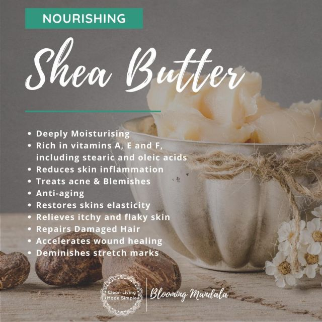 Unrefined Shea Butter is a wonderfully nourishing and healing butter making it a popular ingredient for use in many skin and body care products, such as body butter, lip balms, moisturisers, hair treatments and deodorants. What are some of the benefits of Unrefined Shea Butter? 💟 Rich in vitamins A, E and F, including stearic and oleic acids 💟 Anti-inflammatory properties 💟 Suitable for all skin types  💟 Traditionally used to treat scars, eczema, psoriasis, dry skin and wrinkles 💟 Anti-aging 💟 Restores skin elasticity 💟 Accelerates wound healing 💟 Treats acne and blemishes 💟 Repairs damaged hair 💟 Demishes stretch marks Once refined shea butter has lost it's beneficial properties and may contain traces of hexane, a toxic chemical used during processing.  Unrefined shea butter is toxin-free and retains the nourishing properties. Our Shea butter is sourced from an Australian Owned, Family-operated company promoting West African fair trade and sustainability practices and environmental conservation. If the aroma of unrefined shea butter is not to your taste or interferes with your recipe you can try leaving the shea butter container open and the characteristic aroma will be reduced. Link to buy yours in our bio